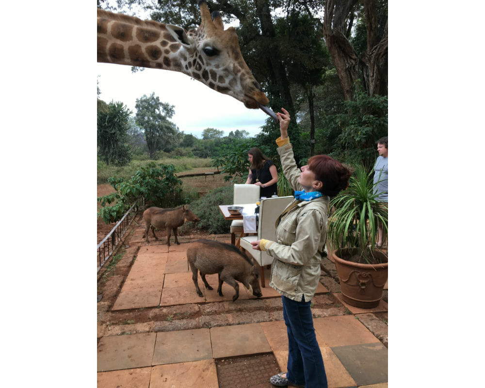 Mature Sensual Giraffe in Africa Nikki West Travel Companion